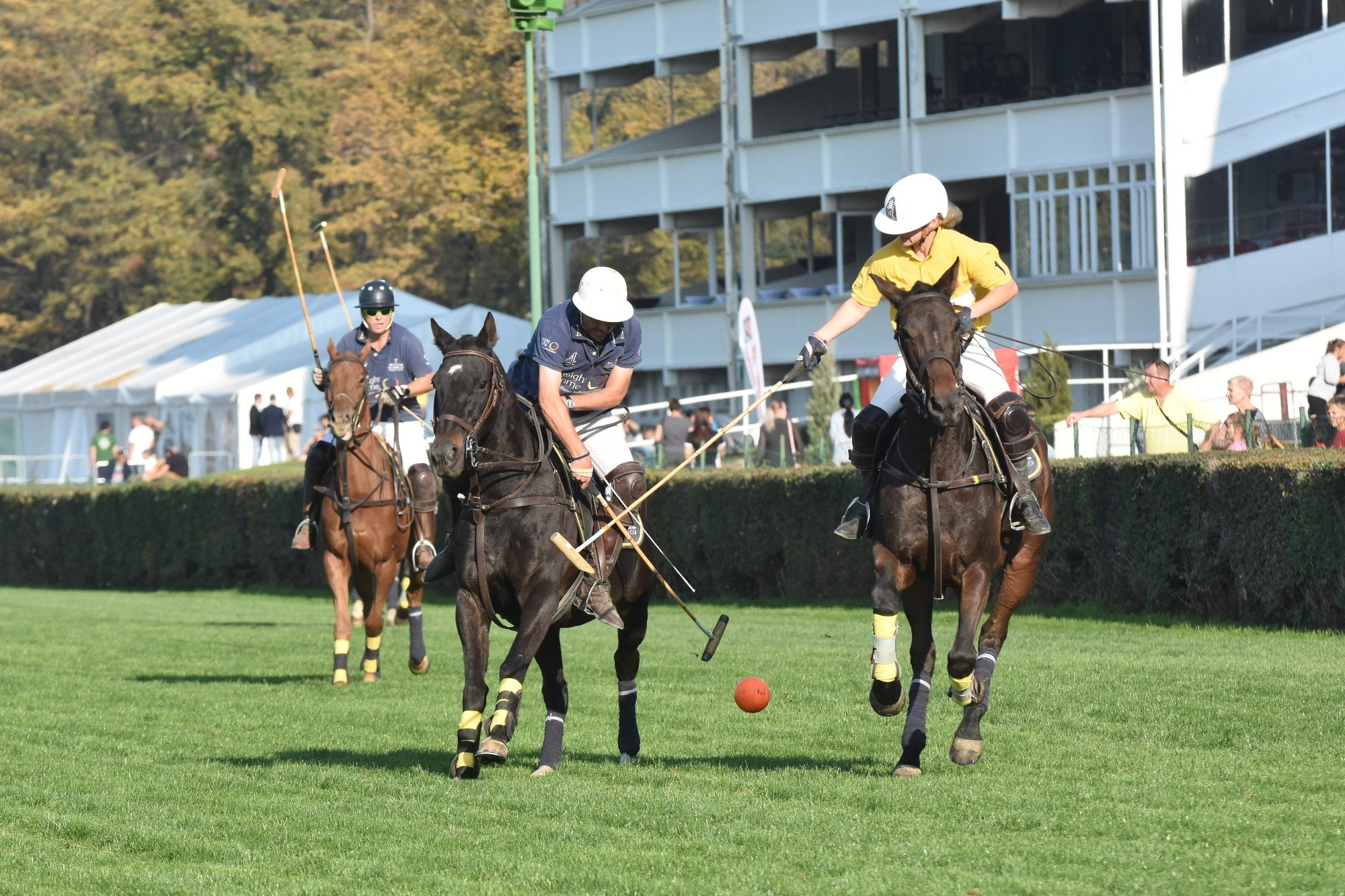 08–09/06/2019 // Gold Cup – Horse Racing Day, Taxis Polo Open Cup